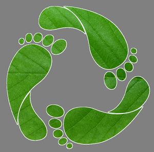 green-footprint-tr-300